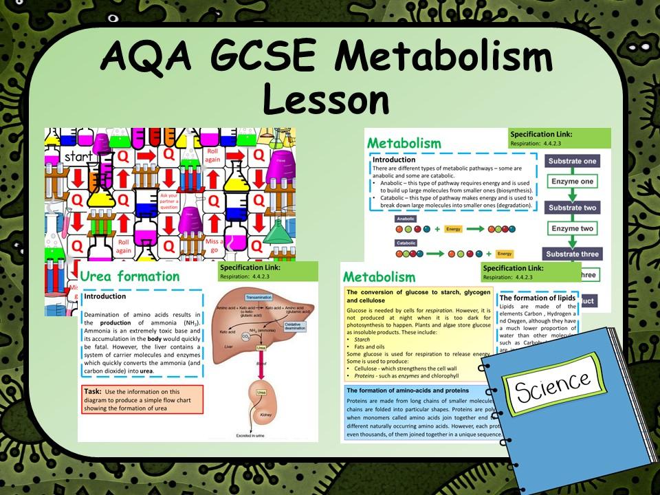 AQA KS4 GCSE Biology Metabolism Lesson
