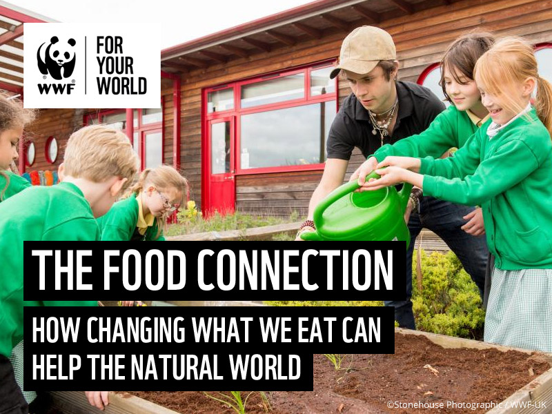 The Food Connection - Focus on Biodiversity