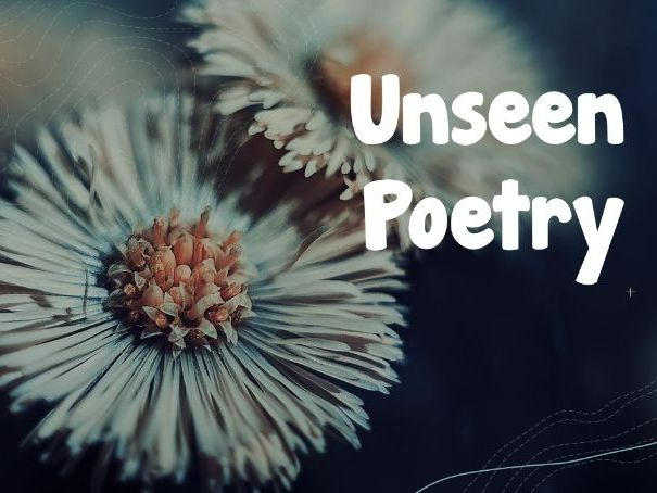 Unseen Poetry - The Witch