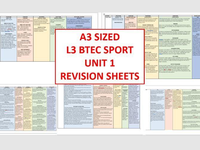 L3 BTEC Sport (Unit 1) - Whole Spec Revision Sheets
