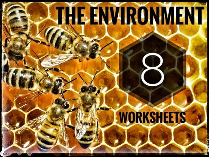 The Environment. 8 Worksheets for cover lessons.