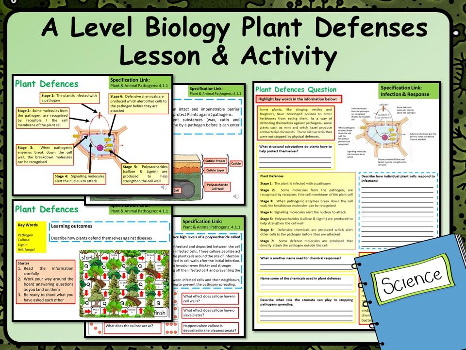 A Level Biology Plant Defences Lesson & Activities