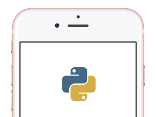 Python Programming - Mobile Phone Bill Task - SOLUTION INCLUDED