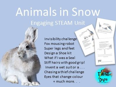 Project Based Learning: Animals in Snow - KS1, NGSS, STEAM, Biomimicry
