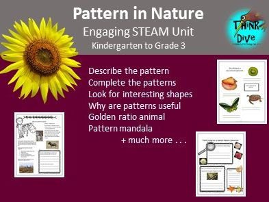 Pattern in Nature - Project based learning, STEAM, KS1, NGSS, Biomimicry