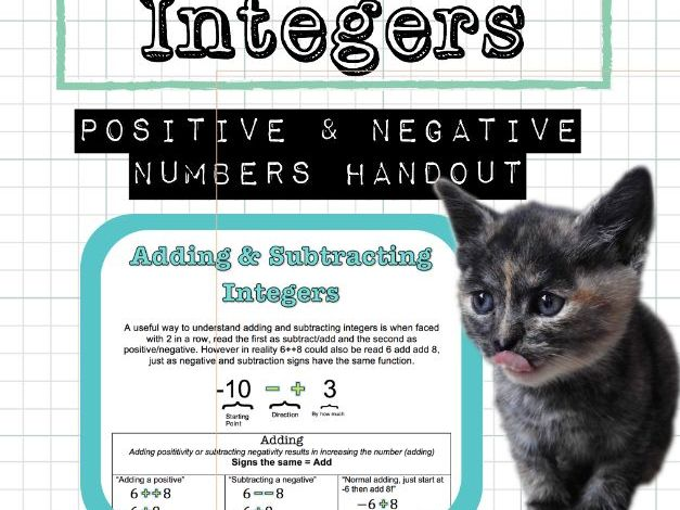 Operations with Integers (Positive Negative Adding subtracting multiplying dividing)