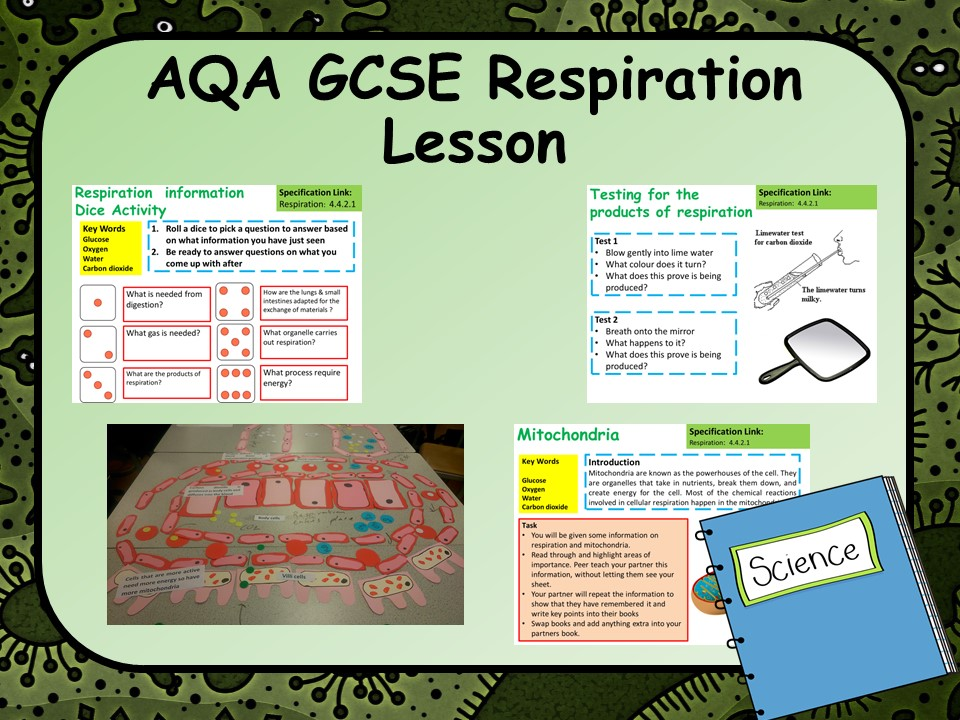 AQA KS4 GCSE Biology (Science) Aerobic Respiration Lesson | Teaching Resources