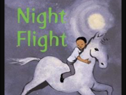 Night Flight by Michaela Morgan - Unit of Work