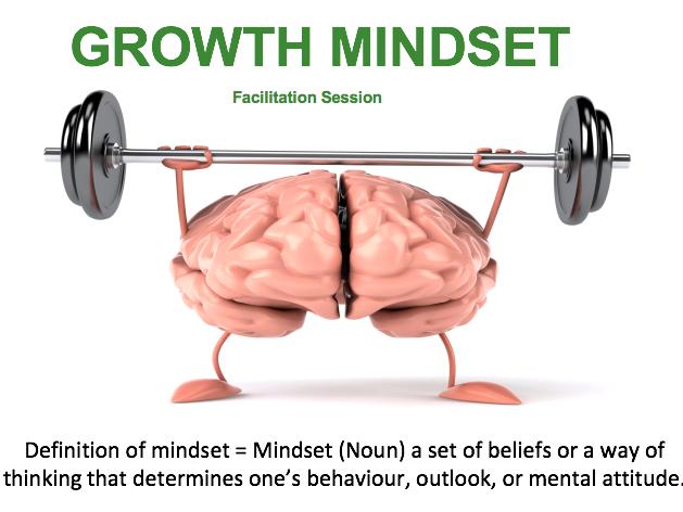 Growth Mindset Facilitation/Presentation
