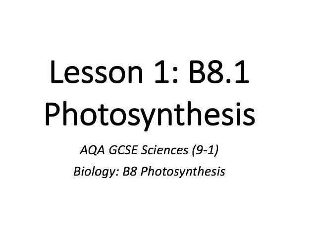 B8.1 Photosynthesis