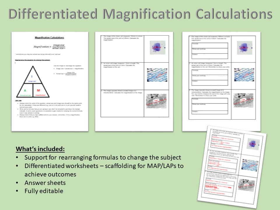 Magnification Calculations Worksheet