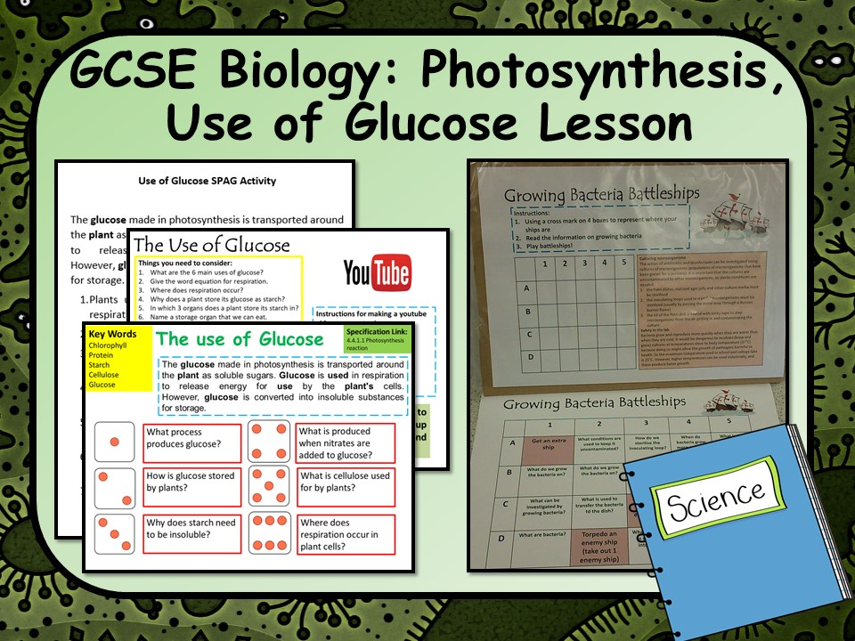 GCSE AQA Biology (Science) Uses of Glucose From Photosynthesis Lesson