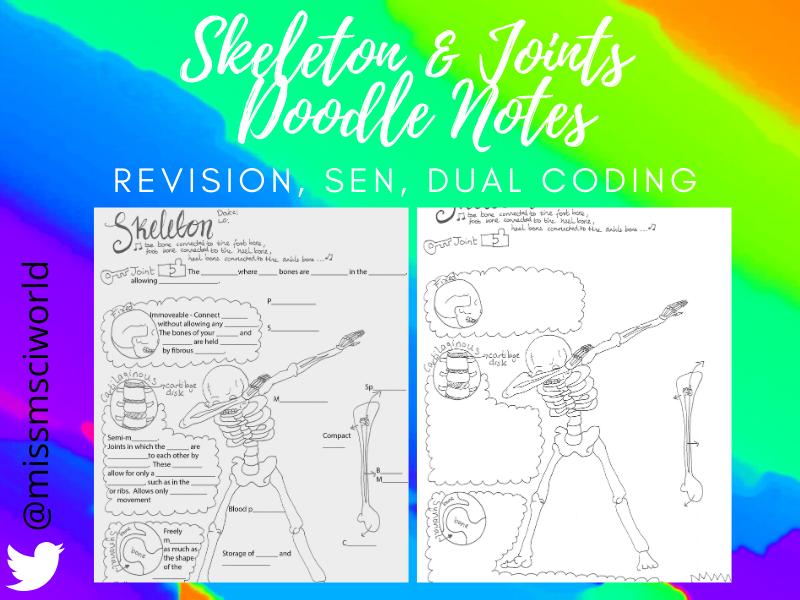 Skeleton & Joints Science Doodle Notes