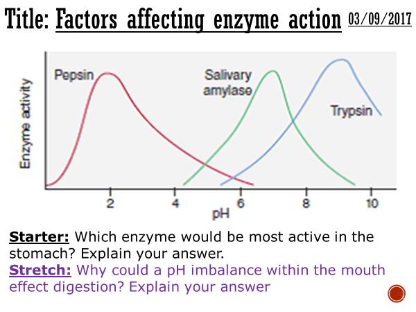 Factors affecting enzyme action - complete lesson (GCSE 1-9)