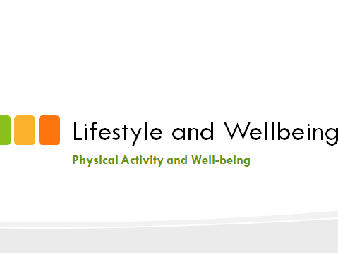 Level 2 Sport: Lifestyle & Wellbeing (Full unit with PowerPoint, worksheets & Unit Plan)