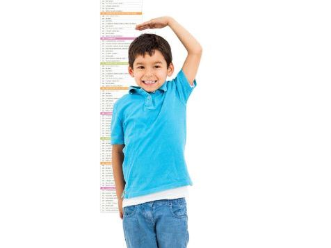 Lesson plan Numeracy Maths height tallest Special Needs SEN Primary autism