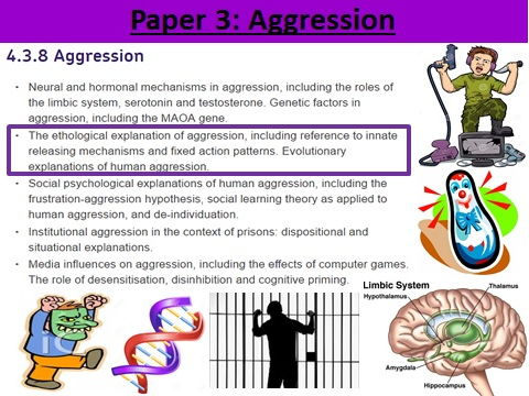 Aggression: The Ethological Explanation of Aggression (AQA New Spec)