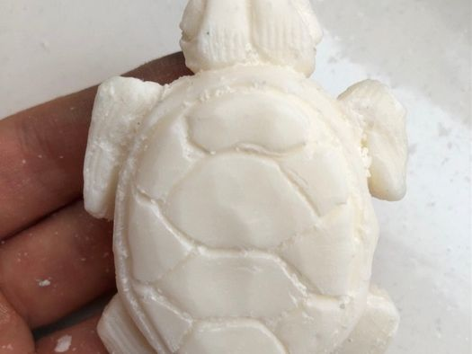 Turtle Soap Carving
