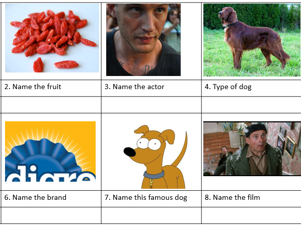 End of term picture quiz