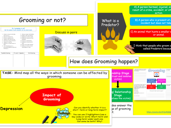 Grooming -Lesson and Workpack