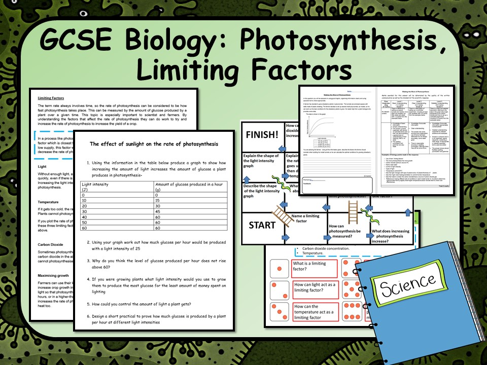 KS4 AQA Biology (Science) Limiting Factors of Photosynthesis Lesson