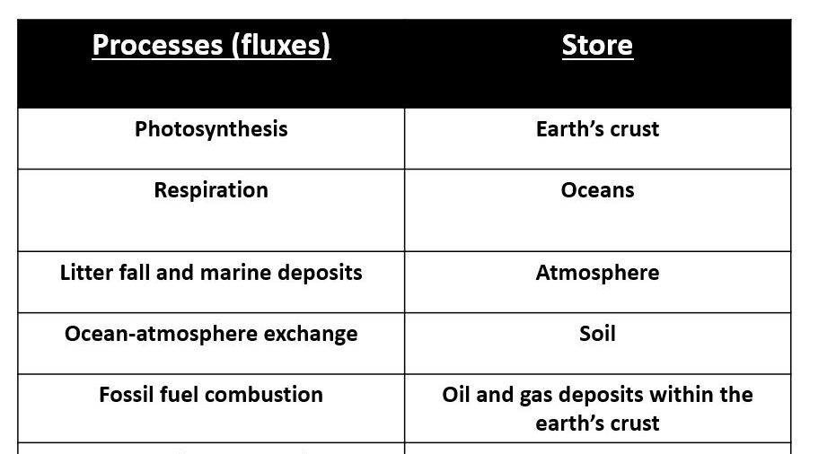 A Level; Arctic - Tundra carbon cycle