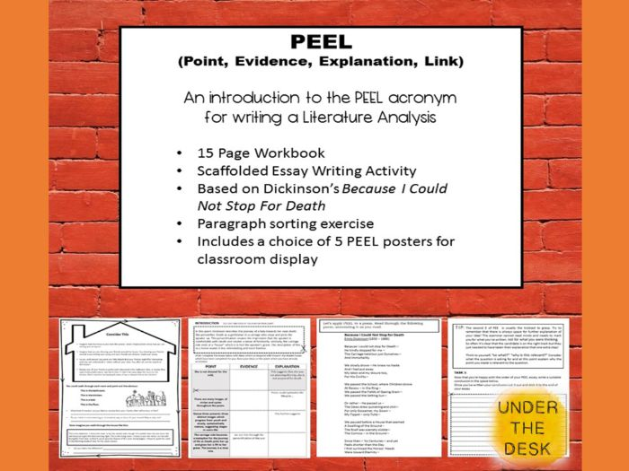 peel paragraph worksheet