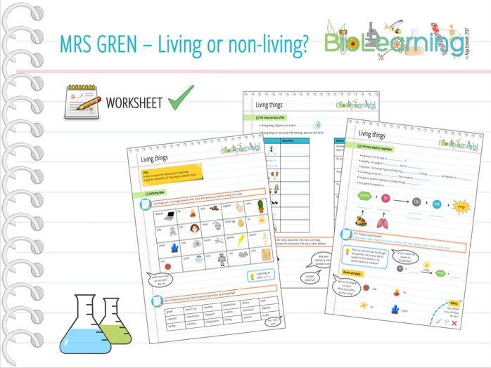 Mrs Gren Living Or Non Living Worksheet Ks2 Ks3 By