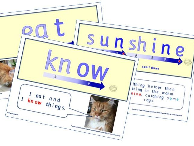 Ed the Reading Cat Word of the Week Posters – mini pack 1