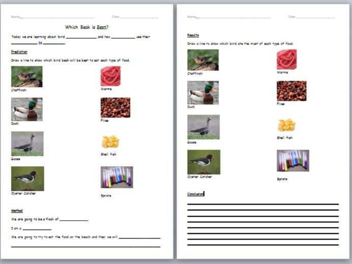 Leson Plan, Presentation and Worksheet for Whole Class Bird Beak Science Experiment