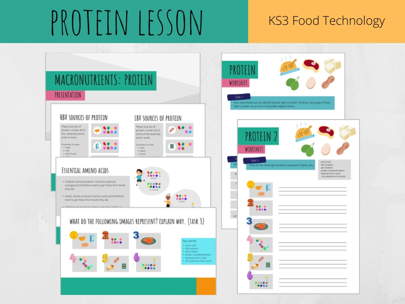 Protein lesson  (KS3 Food Technology)