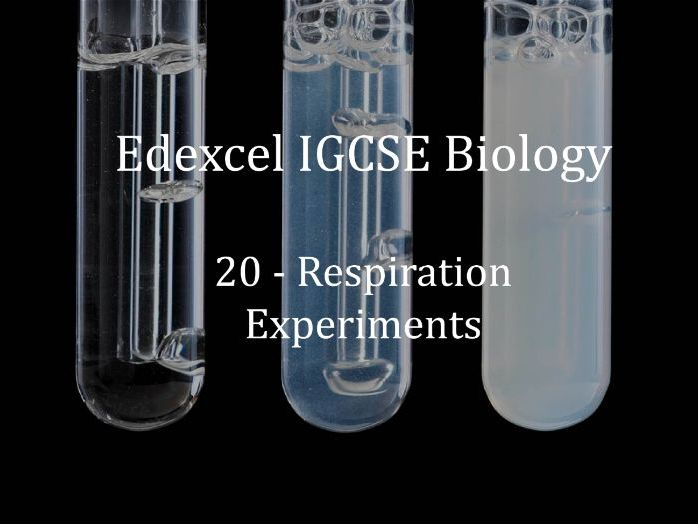 Edexcel IGCSE Biology Lecture 20 - Respiration Experiments
