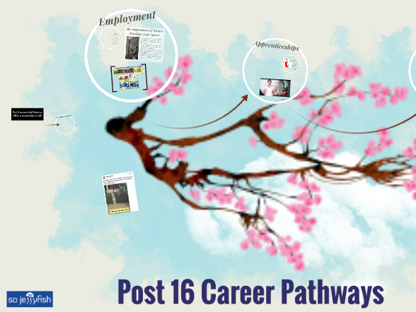 Post 16 Career Pathways.