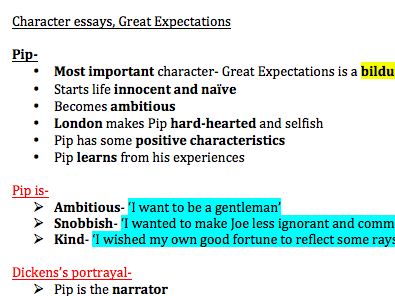 GREAT EXPECTATIONS detailed character essays