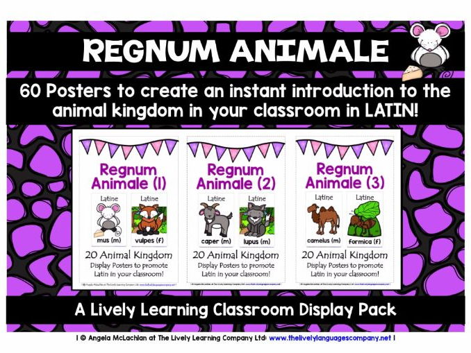 LATIN ANIMALS - 60 POSTERS / FLASHCARDS PACK