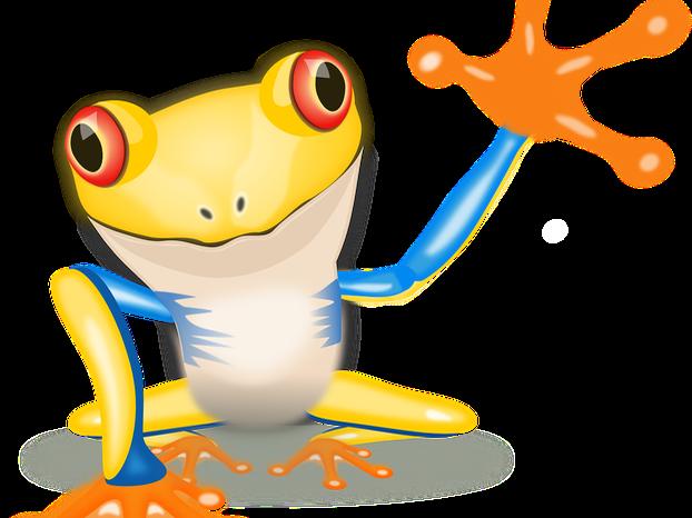 Frog Quiz