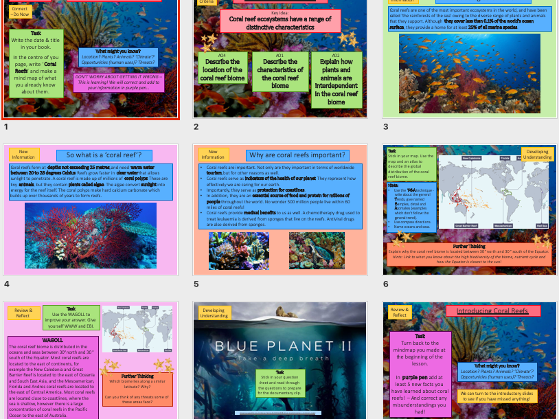 Lesson on the Coral Reef Ecosystem / Biome KS3 Geography