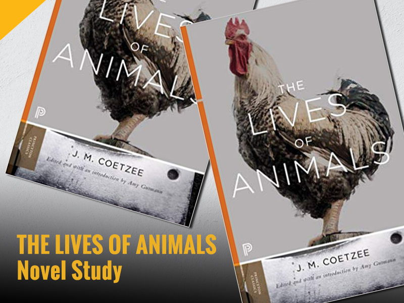 The Lives of Animals - Novel Study English Resources