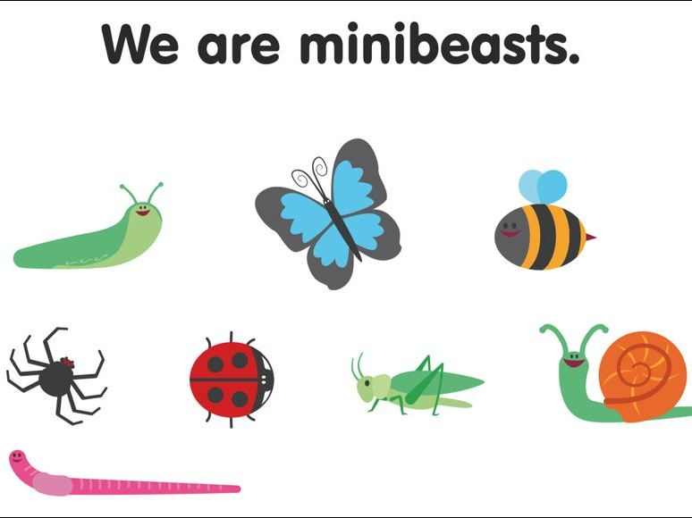 We are Minibeasts