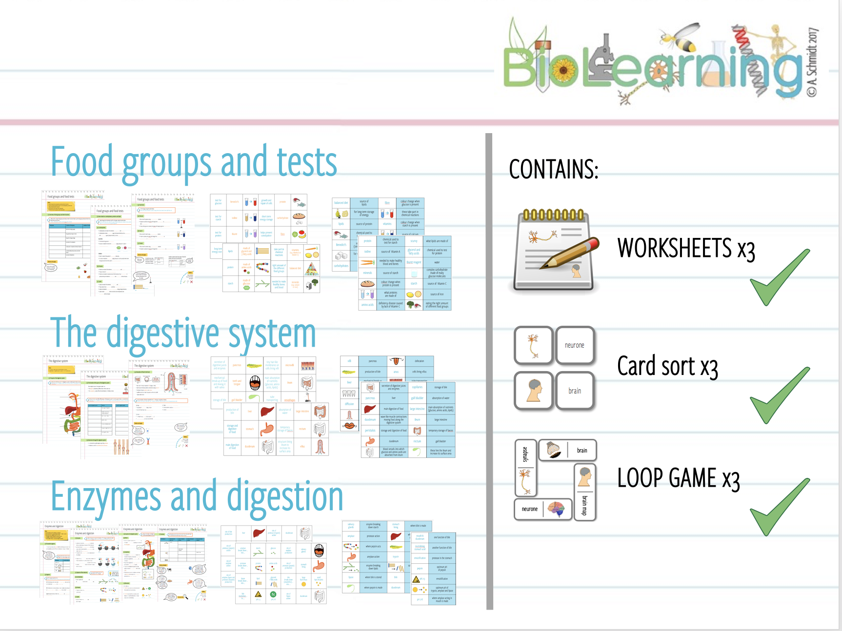Food groups & tests / Digestive system /Enzymes and digestion - worksheets, card sorts, loop games - 9 resources (KS3/KS4)