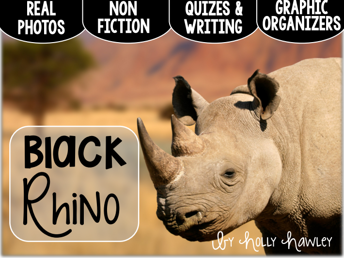 Black Rhinoceros-A Research Project-US Version