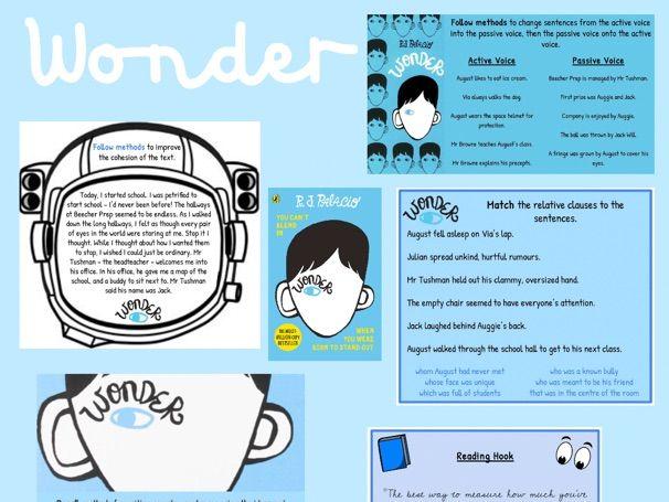 Wonder Resources - Y6