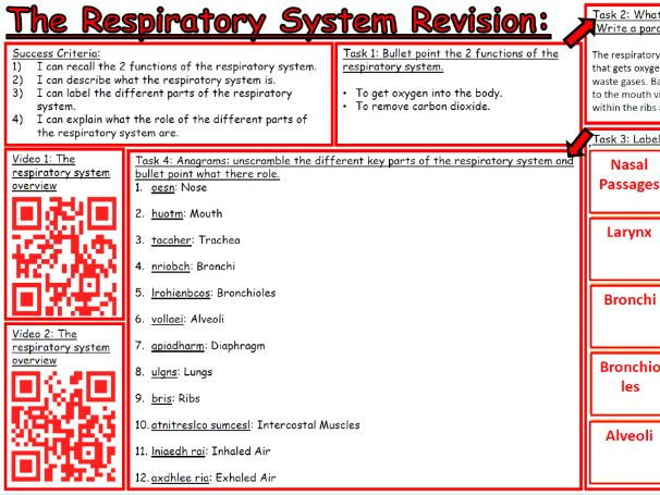 Edexcel 9-1 GCSE PE - Respiratory System Learning Progression Mat Revision Full Specification