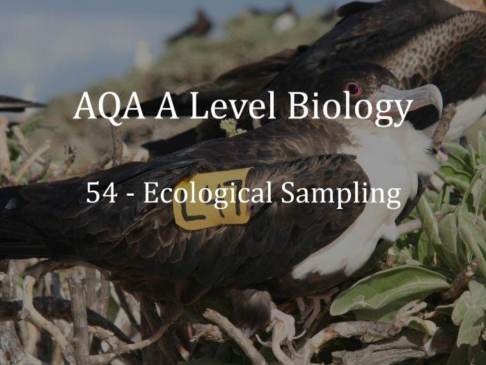 AQA A Level Biology Lecture 54 - Ecological Sampling