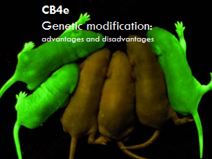 CB4e 9-1 - The advantages and disadvantages of genetic modification