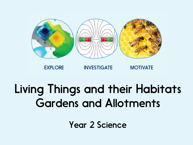 Living Things and their Habitats - Gardens and Allotments - Year 2