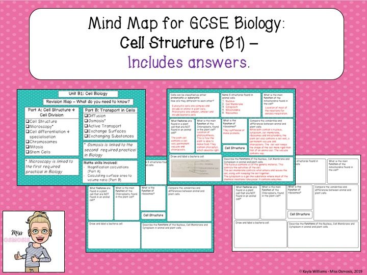GCSE Biology Revision Mind Map: Cell Structure