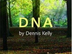 DNA paragraph sheets