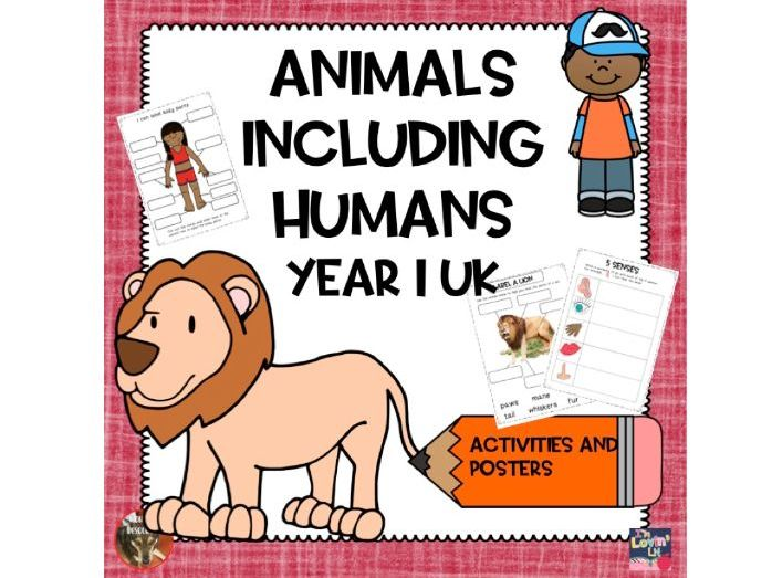 Animals Including Humans Year 1