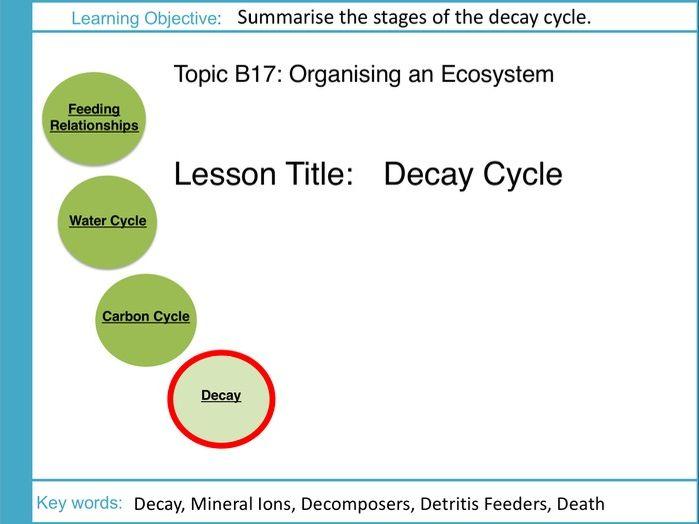 AQA GCSE: B17 Ecosystems: L4 Decay Cycle